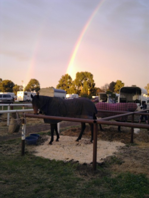 Occy_and_rainbow_at_werribee-0