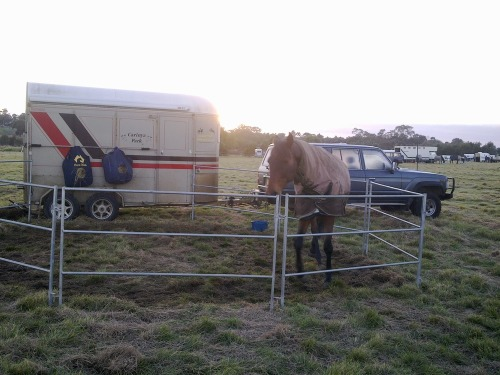 Sunrise_at_bulla_tt_horsetrial