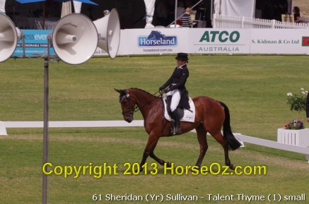 61 sheridan yr sullivan talent thyme 1 small